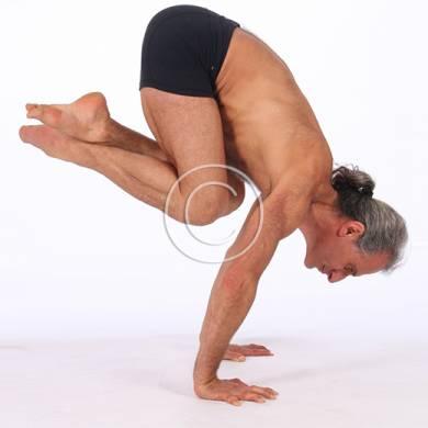 Yoga Synergy kezdő-haladó